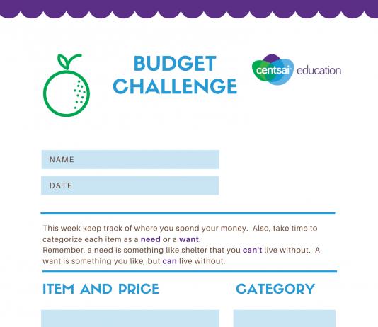 CEE 8th Grade Standard: Budgeting Challenge