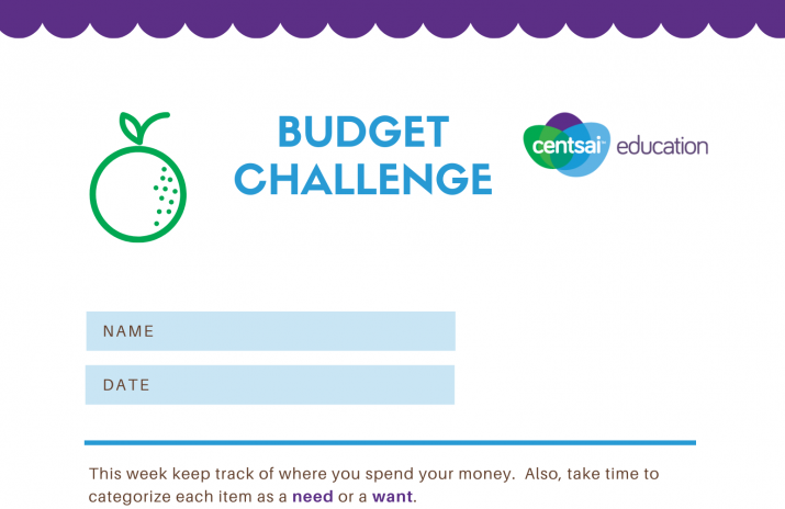 Buying Goods and Services: Budgeting Challenge