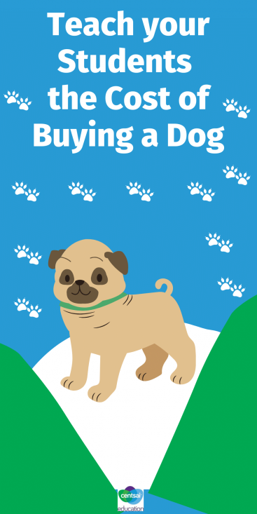 How much is that doggy in the window? And how much is his food? And vet costs? Teach your students the importance of market research, budgeting and more with this free downloadable. #CentSaiEducation #budgetingtips #savingmoney #savemoremoney